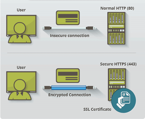 Why you need SSL for your website security & SEO